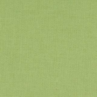 Moda Bella Solids Grass Yardage (9900 101)